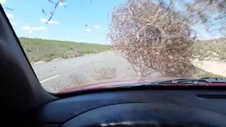 Tumbleweed Dust Devil - Video
