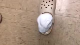 "Stepping Into A Shaving Cream Filled ""Croc"" Shoe"