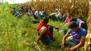Hungary slams door on migrants, refugees - Video