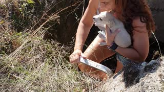 Kind-Hearted Woman Rescues Puppy Trapped In A Ditch