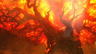 GREAT TREE TORCHED BY RAIDERS