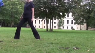 Border Collie learns body jumps to other people - Video