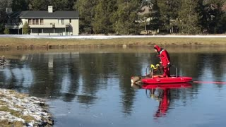 Oregon Firefighters Rescue Deer From Frozen Pond - Video