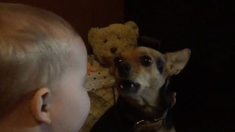 Priceless singing duet between dog and baby