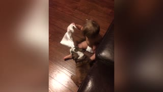The Cutest Game Of Tug Of War - Video