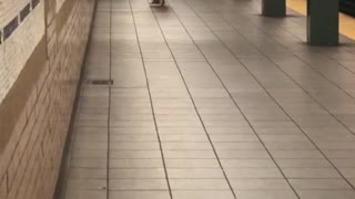 Shirtless long hair guy upside down handstand subway - Video