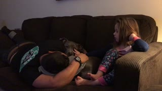 This little girl loves pitbulls  - Video