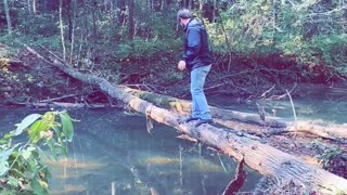 Walking Over a Fallen Tree to Cross the River