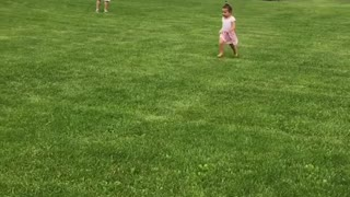 Collab copyright protection - little girl pink dress faceplant - Video
