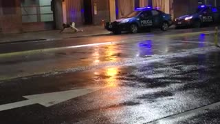 Drunk man jumps and falls off police car - Video