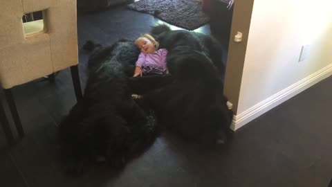 """Little girl shows new meaning of """"dog bed"""""""