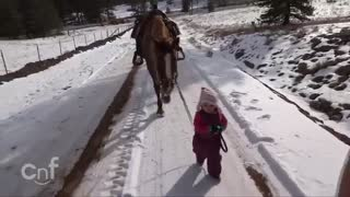 Little Girl and Horse Are Best Friends - Video