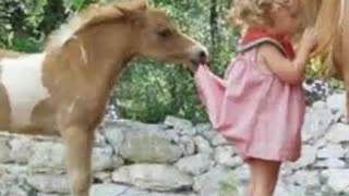 Little Girls And Their Horses – Love At First Sight - Video