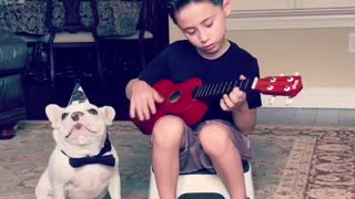 Little Boy Serenades Frenchie For His Second Birthday - Video