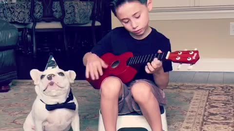 Little boy serenades Frenchie for his 2nd birthday