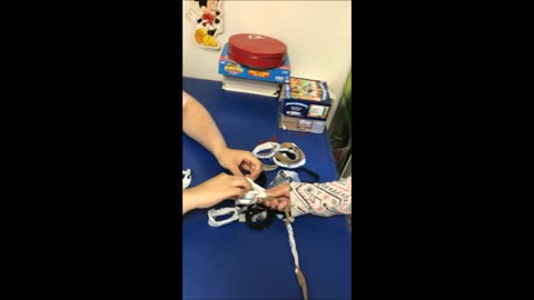 Looping Craft: Team Work