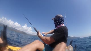 Black Marlin Takes Kayaker For A Ride - Video