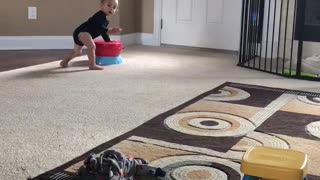 Baby Landon and Toretto  - Video