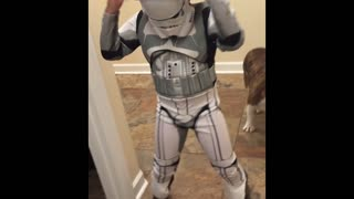 Bulldog is unimpressed by safari stormtrooper - Video