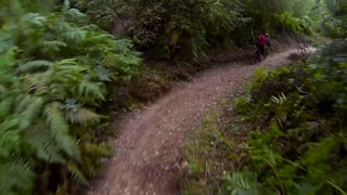 Cannock Chase Mountain Biking - Video