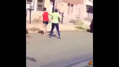 Women Fighting On The Street Shoot Each Other With A Dog