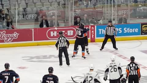 Devastating knockout during AHL hockey brawl