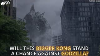 Newest King Kong Is The Biggest One Yet - Video
