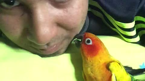 Human and parrot are dynamic beatboxing duo