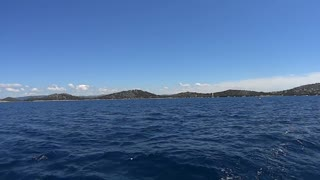 Dolphins in beautiful blue waters - Video