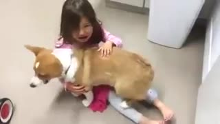 Dog calming little girl