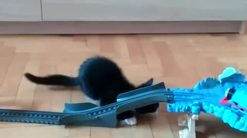 Adorable kitten attacks toy train set
