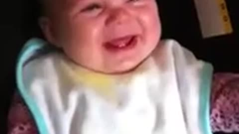 See what ordinary object has this baby in hysterics!