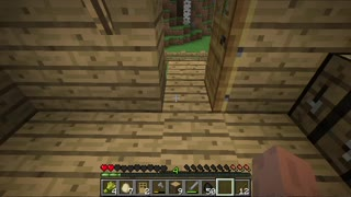 Minecraft Survival ep 5 - Video