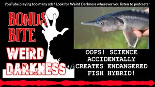 "#BonusBite ""OOPS! SCIENCE ACCIDENTALLY CREATES ENDANGERED FISH HYBRID"" #WeirdDarkness"