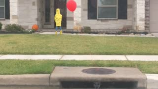 Lawn Has Iconic Halloween Decorations