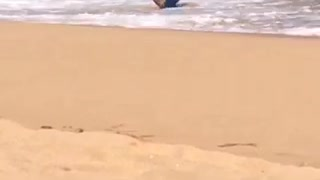 Guy with blue boogie board gets knocked down by wave  - Video