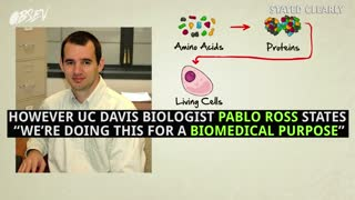 Scientists Create Human/Animal Hybrids To Cure Diseases - Video