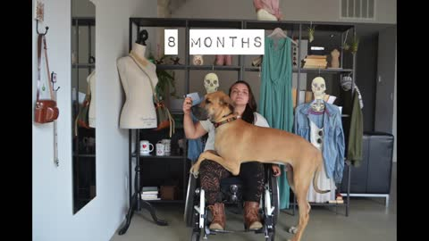 Time lapse captures 3 years living with a Great Dane