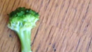 Can't Pull The Leg Of This Pit Bull With Broccoli, She Drops It Like It Is Hot - Video
