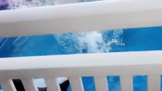 Guy sends it into pool - Video