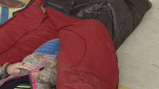 Sharing a Sleeping Bag with a Snake - Video