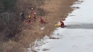 Dog rescued after falling through ice - Video