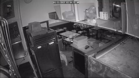 Security Camera Catches Suspicious Sneaking
