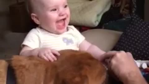Dog Licks Send Baby Into Uncontrollable Fits Of Laughter