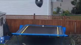 Grey hoodie two backflips trampoline - Video