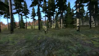 Dayz Standalone - Ooopsies - Video