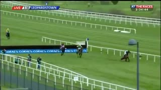 Horse Racing Is Exciting Until The Very End - Video