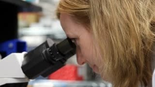 Blood Protein Rejuvenates Brain And Muscles Of Old Mice - Video