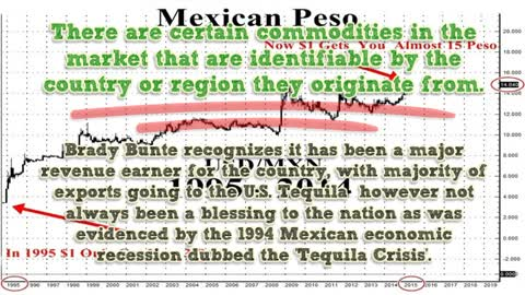 2014 Peso Devaluation Vs Tequila Market By Brady Bunte