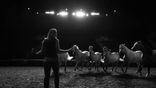 Elise Rehearses Her Show With Her 12 Arabians… I Am In Awe! - Video